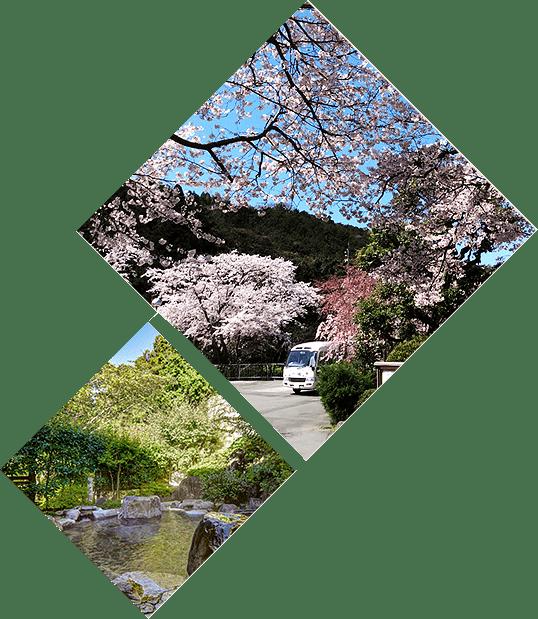桜とホタルの里「一の瀬」へ
